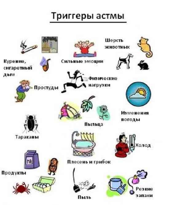 Плакат триггеры астмы, что вызывает приступ