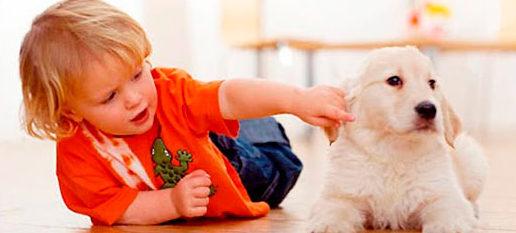 Ребенок с сабакой