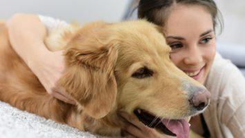 Собака и астма